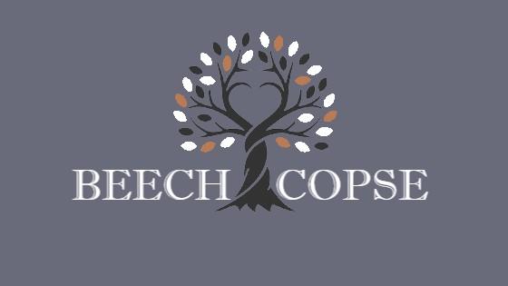 Beech Copse