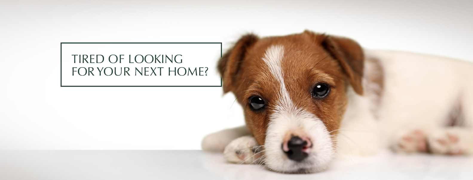 Tired of looking for your next home?